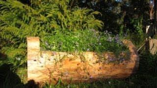 Цветочная Клумба из Бревна Как Сделать Своими Руками / Поделки из дерева Sekretmastera